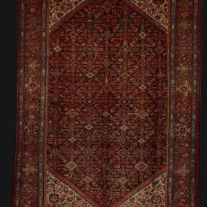 Malayer Iran 310x213